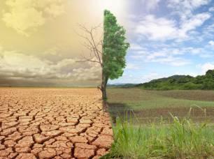 España piensa que una producción competitiva es compatible con los objetivos de lucha contra el cambio climático