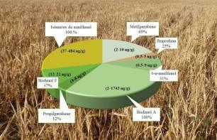 Cereales 'contaminados'