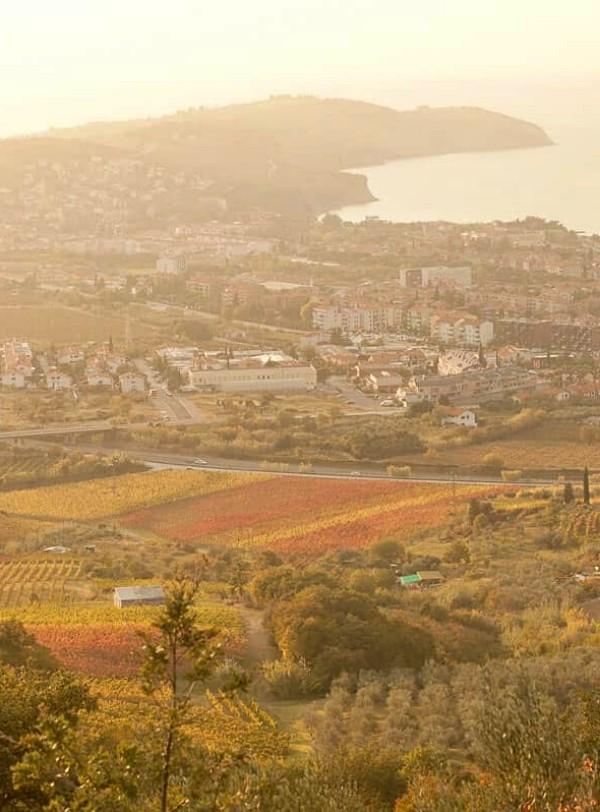 El ámbito local es 'vital' para la sostenibilidad global del Planeta