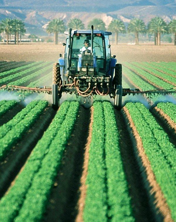 Navarra en busca de la agricultura y ganadería sostenibles
