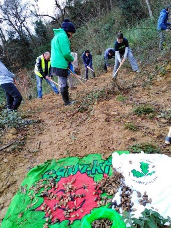El Ayuntamiento de San Sebastián no ha cumplido su palabra y no ha revegetado la laderade Lourdes Txiki