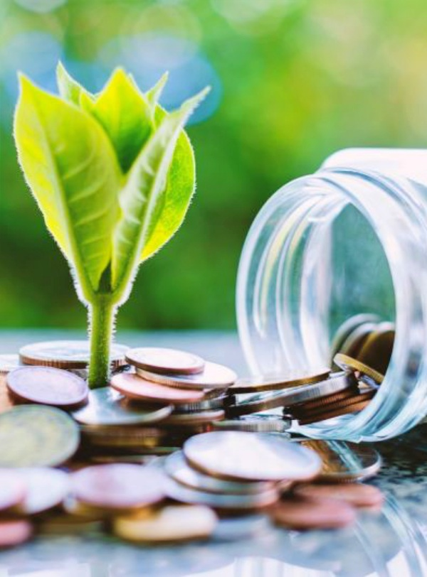 Inversión Ecológica, Sostenible y Responsable