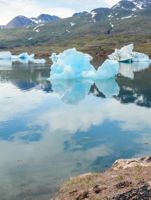El Ártico ya no es solo blanco, ahora cada vez es más verde
