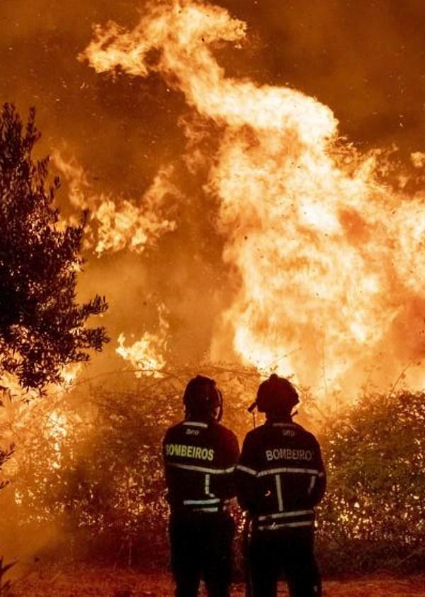 84.000 hectáreas fulminadas por el fuego en 2019