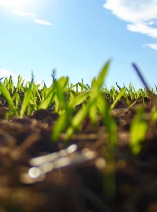 Galicia, el Concello de Monterroso amplía su programa de compostaje doméstico con el apoyo de SOGAMA