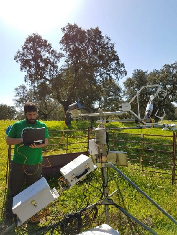 Tecnología verde predice la cantidad de pasto que crecerá en la dehesa