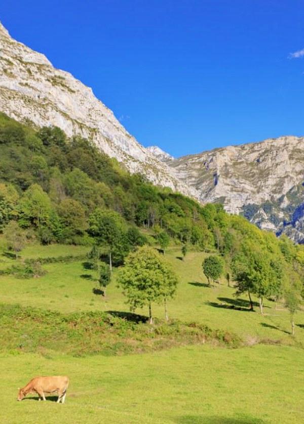 La 'Estrategia de Turismo Sostenible' debe preservar el biodiversidad o no hay futuro que valga
