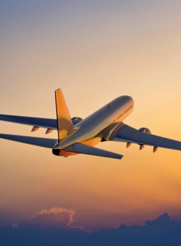 La aviación para hacer turismo es la quintaesencia de la 'insostenibilidad'