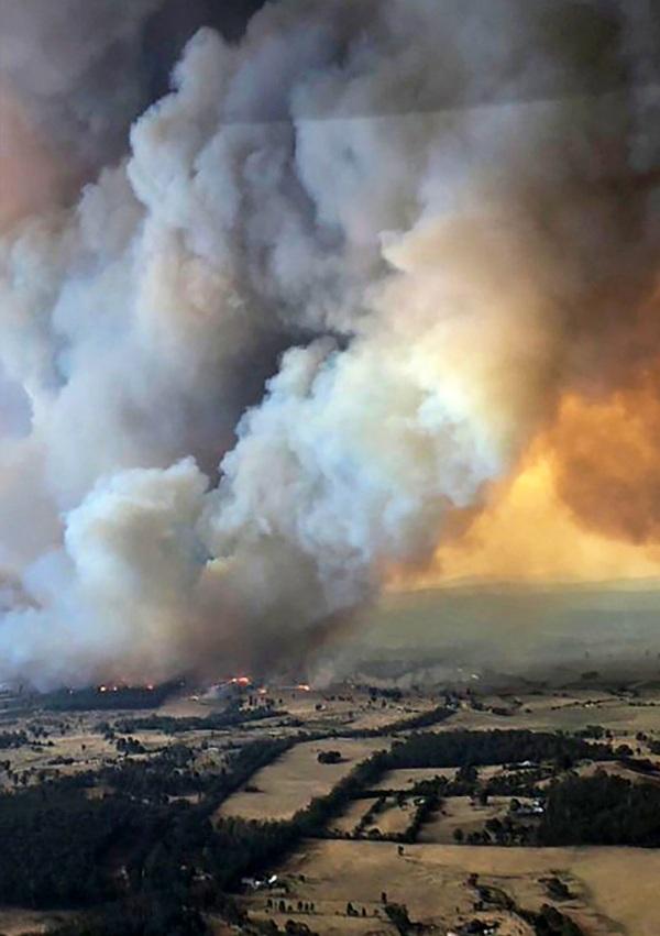 Las 'FAKE NEWS' más insólitas y aberrantes sobre los incendios forestales de Australia