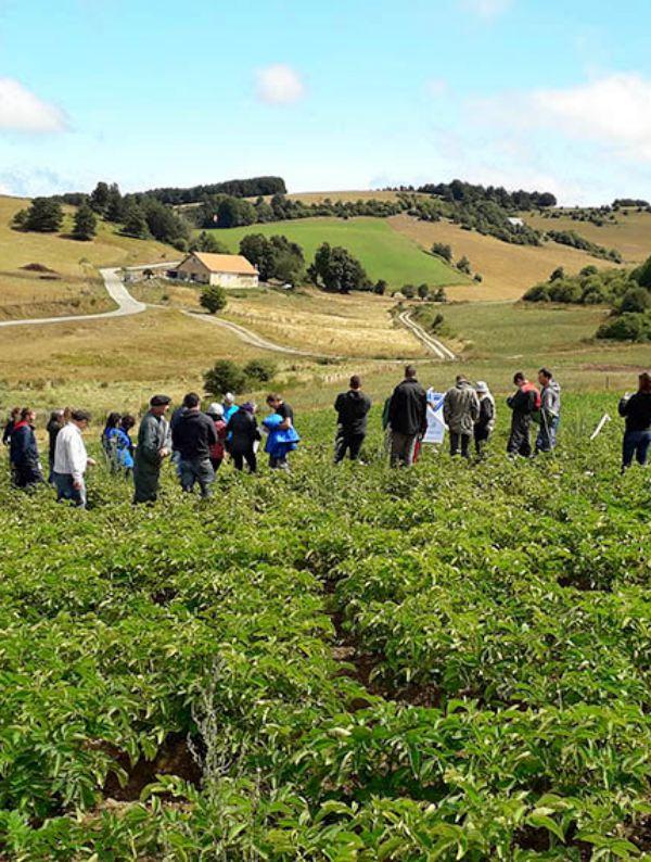 Navarra. CPAEN/NNPEK pone en marcha su nuevo plan de promoción