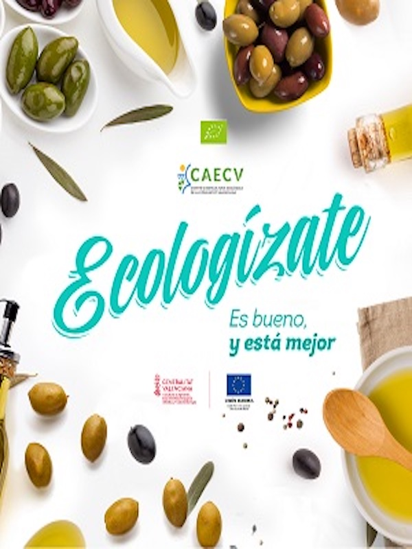 La campaña del olivar para aceite ecológico termina con unos precios un 30% por encima del convencional