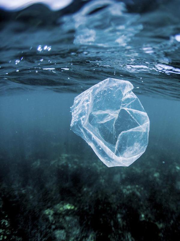 Los pescadores catalanes recogieron 44,7 toneladas de residuos marinos en 2020