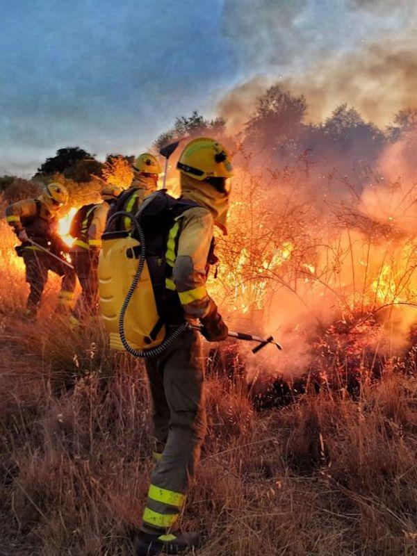 Comienza la época de peligro de incendios forestales en Aragón
