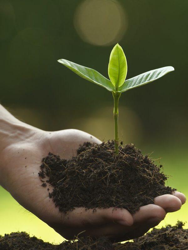 La Dirección General de Consumo valora la importancia del 'Ecoetiquetado' en consumo responsable con el medio ambiente