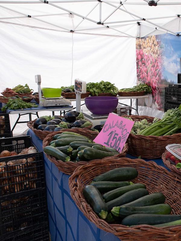 Parque Venecia acoge actividades de educación ambiental y de dinamización entorno al Mercado Agroecológico