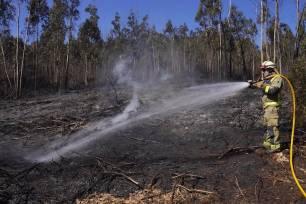 Los incendios forestales registrados en Galicia afectan a unas 500 hectáreas, de ellas 280 en Folgoso do Courel