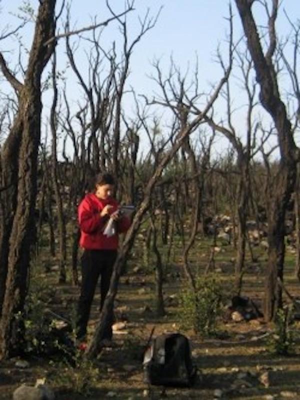 Servicios ecosistémicos, biodiversidad y la 'inexistente' política de conservación del medio natural