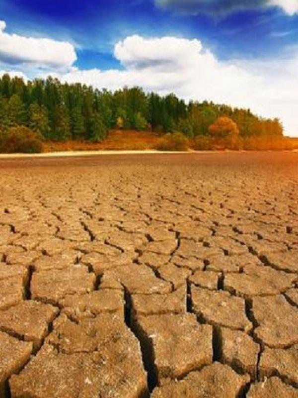 Galicia afirma que la Ley de Cambio Climático menguará las inversiones de las conserveras