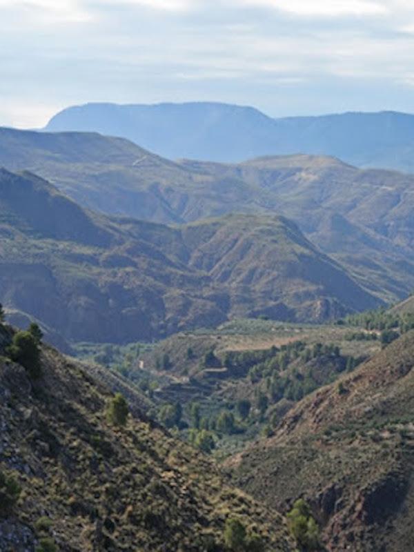 Restaurada el área del incendio de Quesada y Huesa, en Jaén