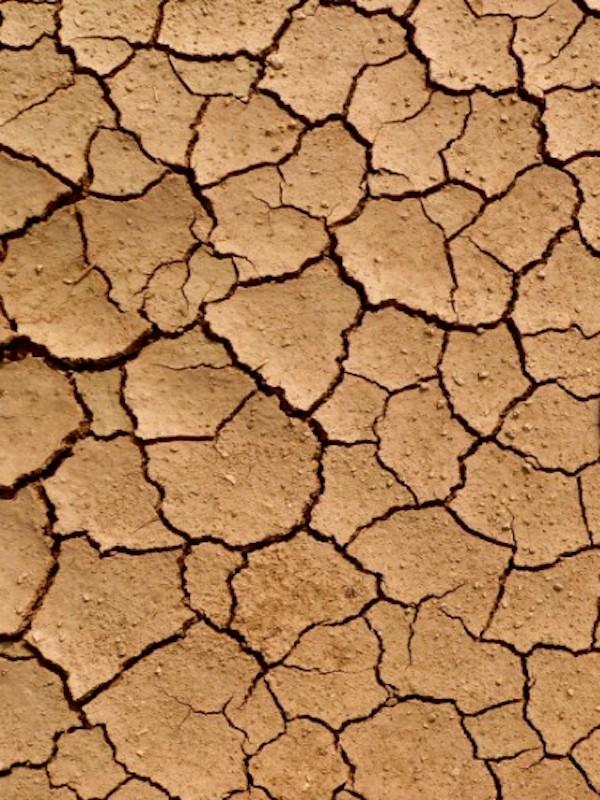 Un VOX 'errático' opina sobre el cambio climático