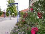 El 'Port de Tarragona' se implica al máximo en la sostenibilidad