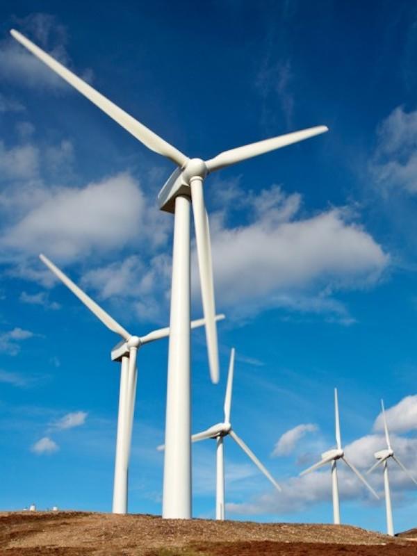 Asturias. No podemos permitir los eolicos en la zonas de exclusión en Somiedo y Cangas del Narcea