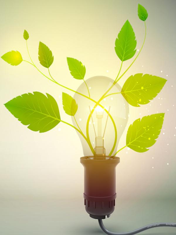 Red Emprendeverde, 10 años impulsando el emprendimiento verde