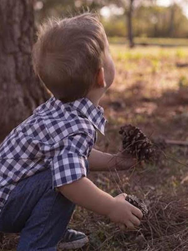 La enorme importancia de la naturaleza en la educación de los niños