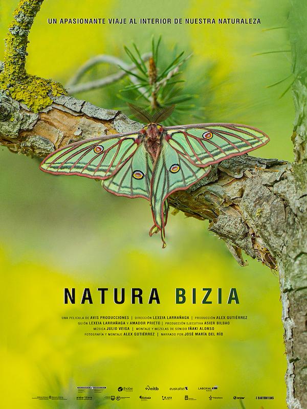 Ya en los cines: 'Natura Bizia' con la biodiversidad de Euskadi y Navarra
