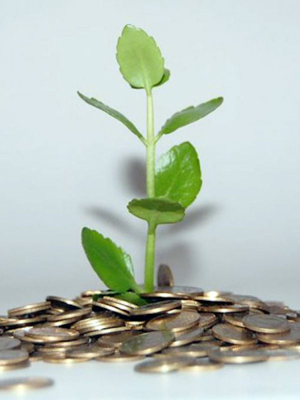 Europa fija criterios para identificar inversiones verdes