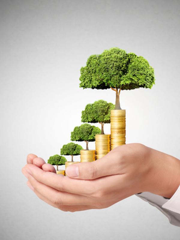 Iberdrola suscribe una línea de crédito sostenible por 2.500 millones