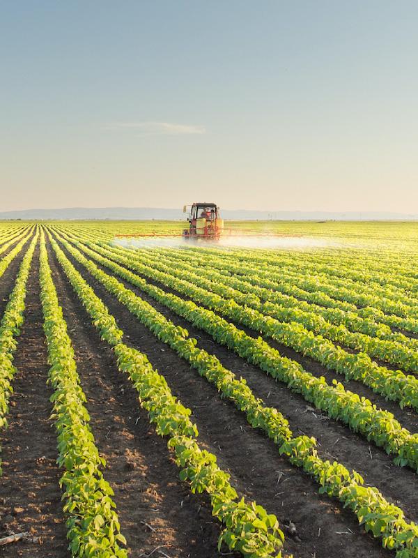 """Conferencia de Rattan Lal para Paraguay: """"La sostenibilidad de la agricultura sólo es posible si se pone en primer plano la dimensión humana y social"""""""