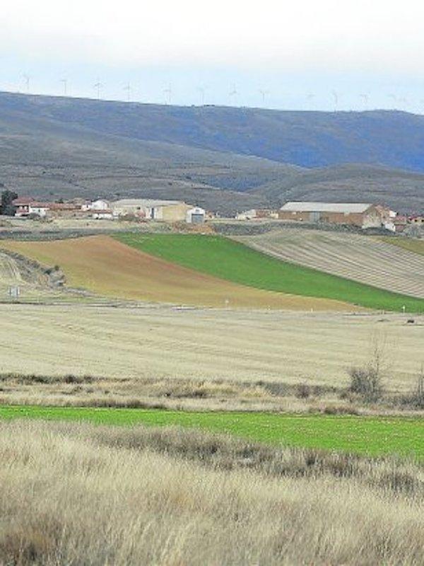 La macrogranja de Noviercas (Soria) para apropiarse del agua de un acuífero