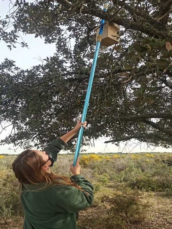 SEO/BirdLife crea un Oasis de Biodiversidad para las aves en Valencia y Huelva
