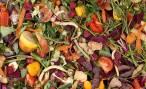 Galicia destinará fondos a mejorar la gestión de biorresiduos