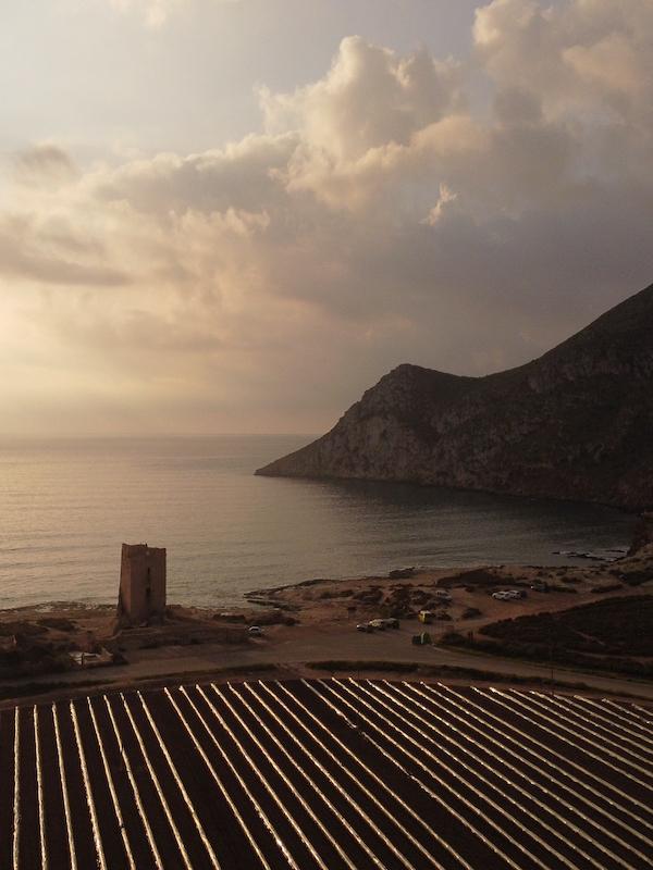 Más vale un mal acuerdo que un buen juicio, ANSE y Cabo Cope a la 'greña'