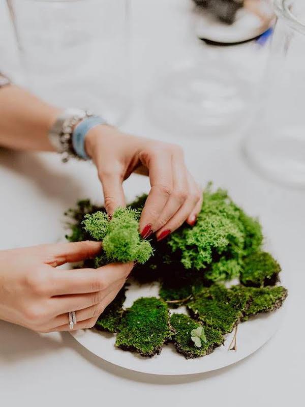 Alimentos eco: cómo conservar y consumir brócoli ecológico