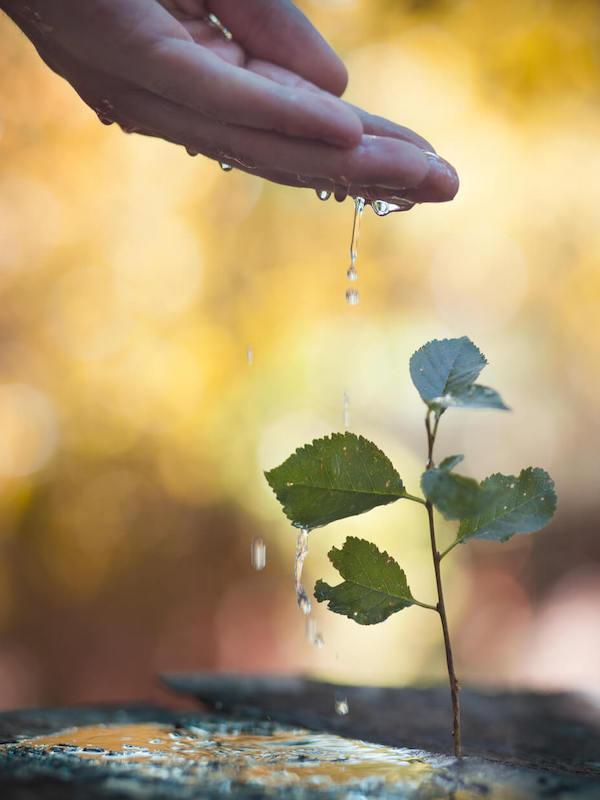 'III Convocatoria de Medioambiente y Desarrollo Sostenible'