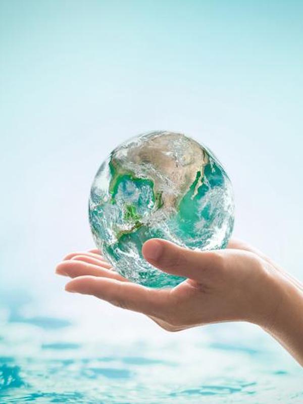 Alternativas para proteger nuestro planeta y sus océanos, encuentros on-line
