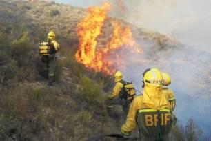 El primer trimestre de 2021 ha sido 'fatal' en cuanto a incendios forestales