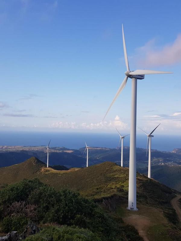 Alegaciones al proyecto de parque eólico en Montes de Cierzo I y II de Navarra