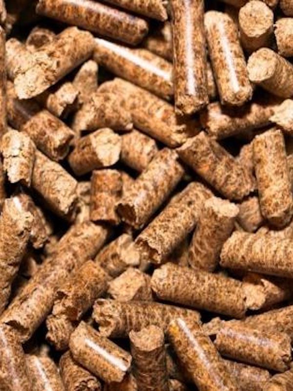 ENplus® espera certificar millones de toneladas de pellet en 2021