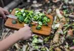 Galicia. Rodeiro amplía el compostaje doméstico a nuevas viviendas