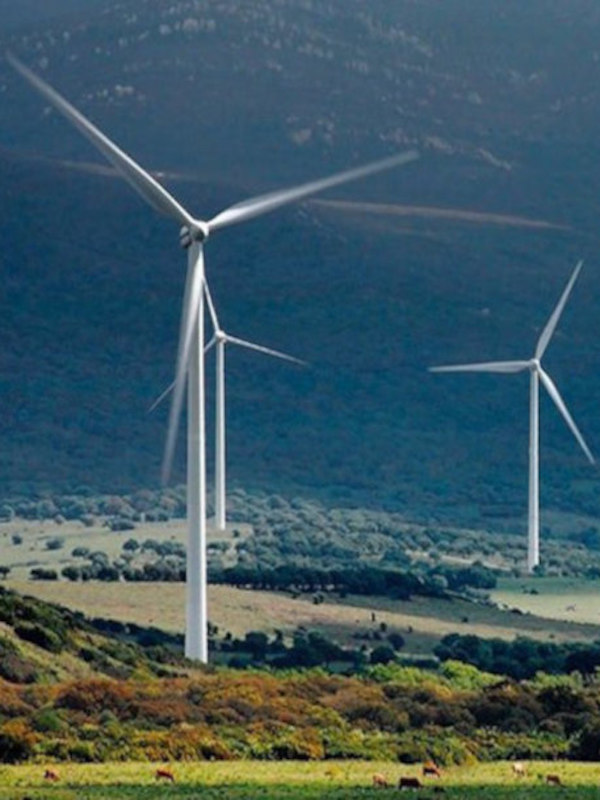 ONG ecologista se opone al proyecto actual para instalar 22 parques eólicos en el Maestrazgo de Teruel