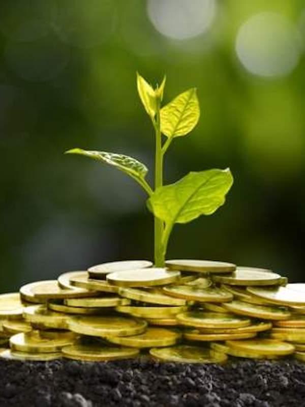 Kutxabank canaliza 1.718 millones a la economía 'verde'