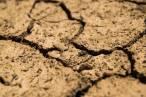 Mas País-Equo 'arremete' contra la ley de cambio climático
