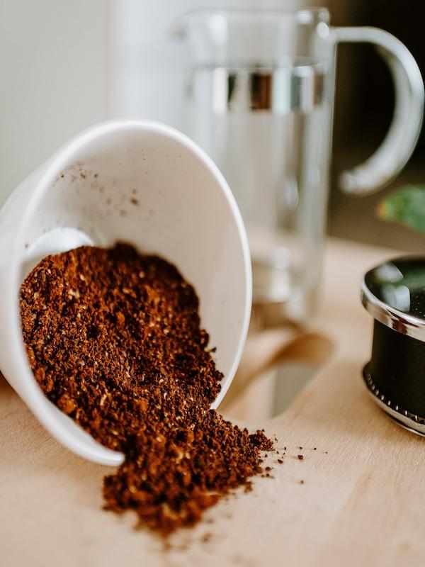 Innovación para los posos de café como alimento para el ganado