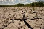 Catalunya desaprovecha la ley del cambio climático