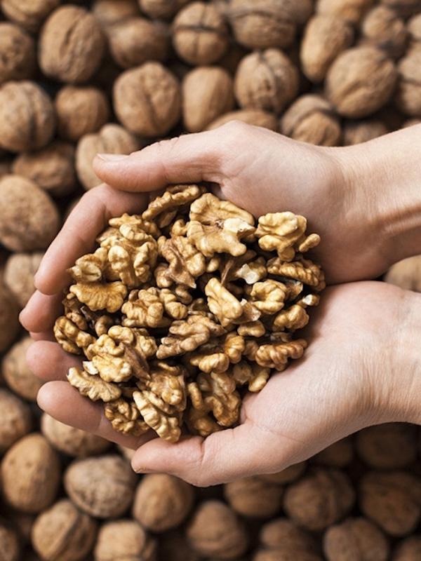 Nueces, fuente de salud