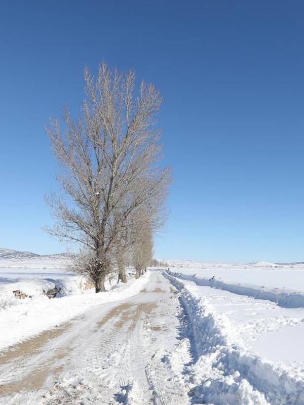 El pasado mes ha sido el enero 2021 más frío desde 2009